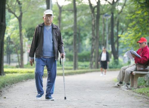 goroi.vn_lựa chọn gậy đi bộ theo chiều cao cơ thể